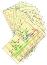 transiteinlagen_fuer_taschenkalender
